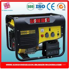 6kW Generating Set für Outdoor-Versorgung mit CE (SP15000E1)