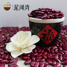 Wholesale Dark Red Kidney Bean With HPS Size 180-220 pcs for 100g