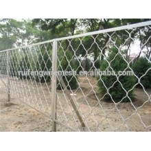 Best Quality Welded Type Safety Sheep/Goat Fence