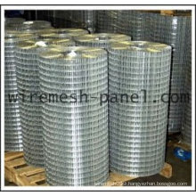 Electric Galvanized welded wire mesh roll