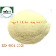 Fungal Alpha-Amylase, Powder Form, 100000 SKB U/g, Baking&Dairy Application