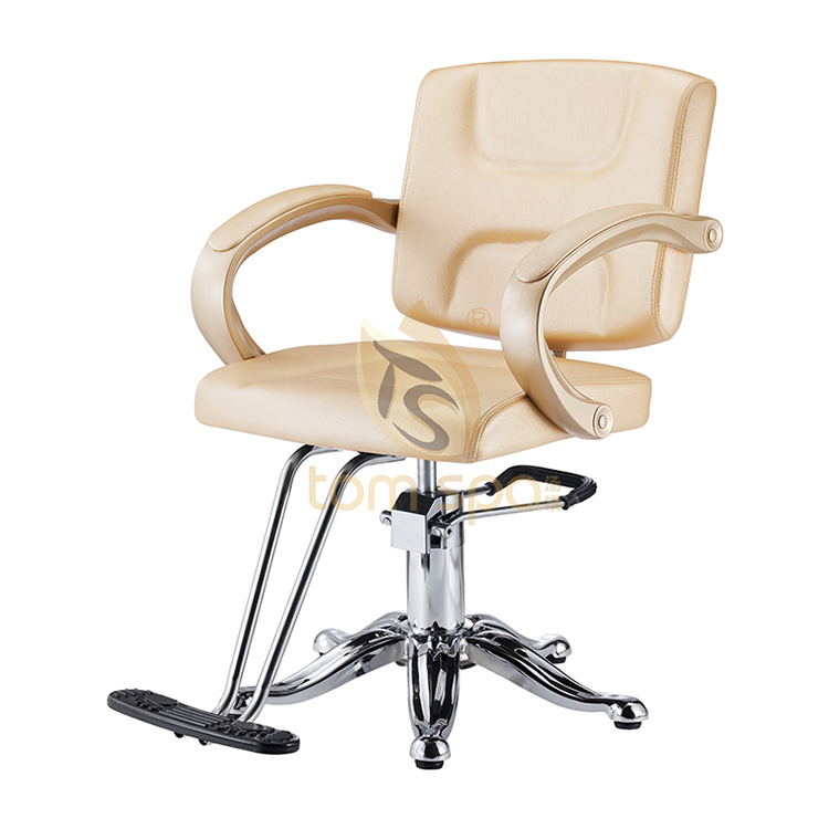 Salon Styling Chair Beige