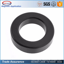High Quality Customized Cheap Injection Moulding Ferrite Magnet