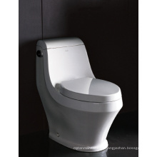 EAGO Produced Watersense W.C Toilet (TB133M)