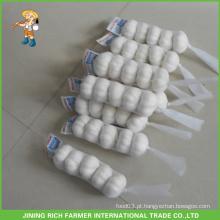 Bom Preço Shandong Alho Branco Neve Fresco 5.5CM