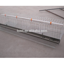 cheap chicken cages for poultry farm buildings