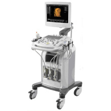 Full Digital Color Doppler Ultrasound Diagnostic System