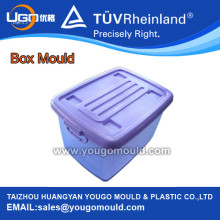Storage Plastic Box Molds