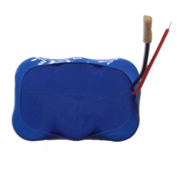 18650 3.7V 21000mAh 1S6P Li Ion Battery Pack