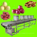 mesh belt date drying machine/equipment/plant