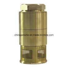 Zcheng Brass Check Valve with Spring Filter Foot Valve Zcfv-01