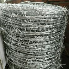Arame farpado de aço inoxidável de dupla linha