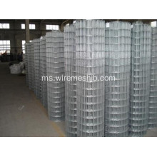 Mesh Galvanized Wire Mesh In Rolls