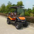 Тяжелый офф корзину дорожный электрический гольф 4 местный с CE