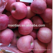 Good Quality Fuji Apple with Competive Price