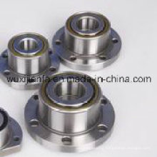 Deep Groove Ball Bearing with Housing