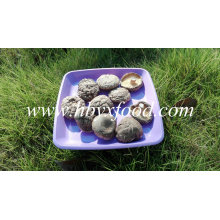 Smooth Shiitake Mushrooms 1kgs Pack with Cap 4-6cm and No Stem