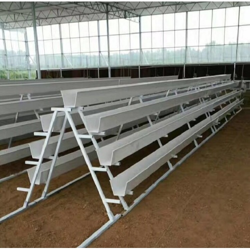 NFT Hydroponic Growing Gully pour la serre