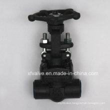 Forged Carbon Steel A105 Butt Welding End Gate Valve