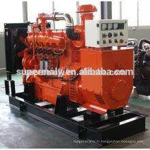 Générateur de gaz 250kVA de Woodward control