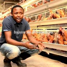 Alibaba vente chaude produits élevage de volaille d'oeufs au Kerala, en Inde