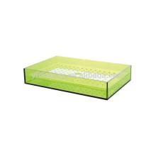 New Style Rectangular Acrylic Insert Tea tray