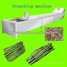 Asparagus blanching machine/asparagus processing line /canned asparagus processing line