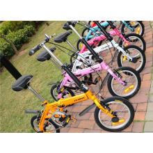 Multicolor Mini Crianças Foalding Bike