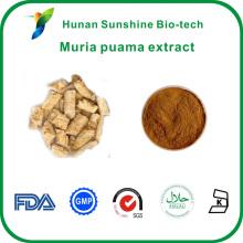 HPLC-getestet Brown feinen Ptychopetalum Olacoides Muria Puama Extrakt mit gutem Preis