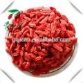 Bayas de goji chino / Secas de Goji / Semillas de nísperos rojos secos