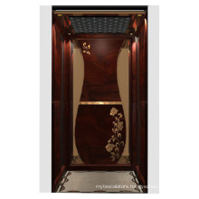 Home Elevator with Classical Decoration