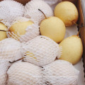 Selecting Export Quality Fresh Ya Pear