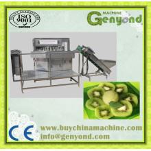 Máquina de secagem de Kiwi em fatias de alta eficiência