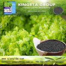 Soil Organic Fertilizer Bio Fertilizer