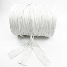 China Manufacturer Direct Sale Price thick cire polypropylene filler yarn