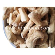 Factory Provide Wholesale Dehydrated Shiitake Mushroom Leg