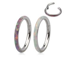Titanium 16G Inlaid Opal On Side Hinged Clicker Segment Hoop Ring