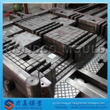 Molde plástico da pálete da fábrica de TaiZhou, molde plástico da bandeja, molde plástico da pálete do transporte