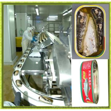 Machine entièrement automatique de thon en conserve d'acier inoxydable