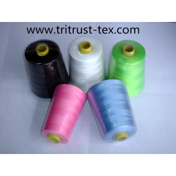 (2/38s) Polyester Thread for Sewing