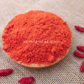 Extracto de Goji Berry Extracto de Goji