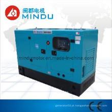 Gerador elétrico diesel 40kw de Weichai com ATS