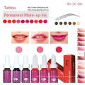 Goochie Permanente Maquillaje Pigmento Tatuaje Ink For Lip