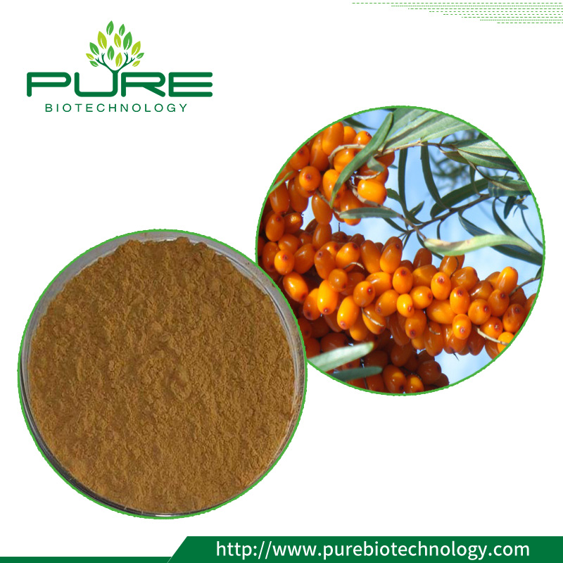 Sea buckthorn fruit Extract
