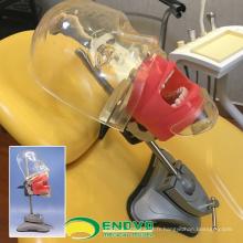 DENTAL02 (12559) enseignement simple tête d'unité de simulateur dentaire fantôme