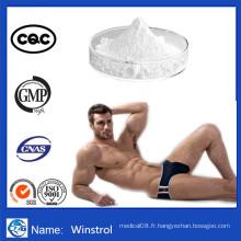 Le bodybuilding sain complète la poudre de stéroïdes Winstrol