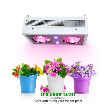 Avancerad Diamond Series Zeus 230w Cob och UV LED Grow Lights