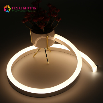 LED Neon Flex Specialty étanche IP68