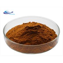 Hochwertige Bio-Goji-Wolfsbeeren-Extrakt-Polysaccharide