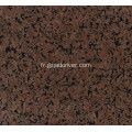 Surface polie Marron Guaiba Granit Stone